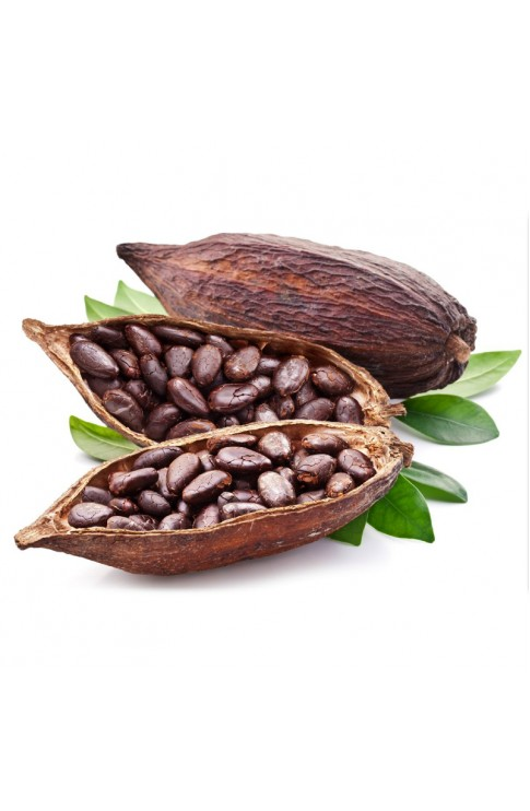 Cacao Fave Intere Tostate 100 Gr