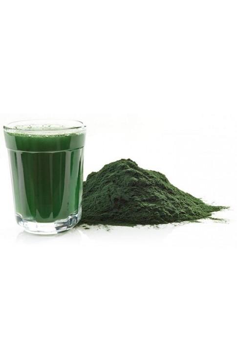 Chlorella Alga Tallo Polvere 100 Gr