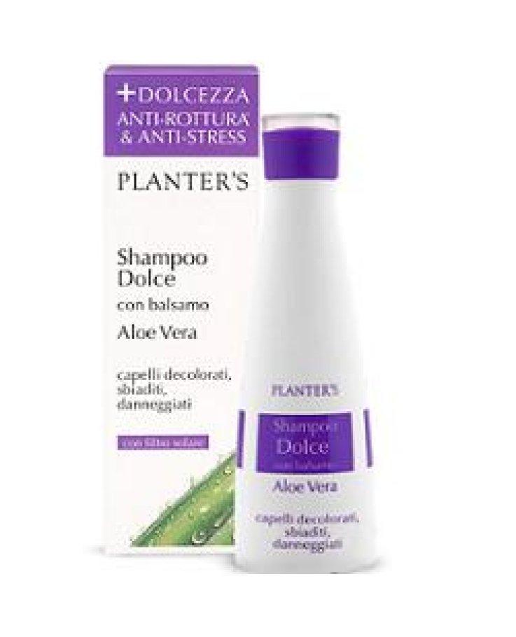 Planters Shampoo Dolce Aloe Vera