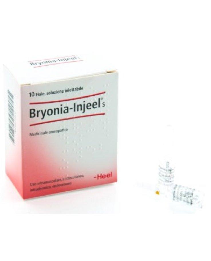 Bryonia Injeel 10 Fiale 1,1ml Heel