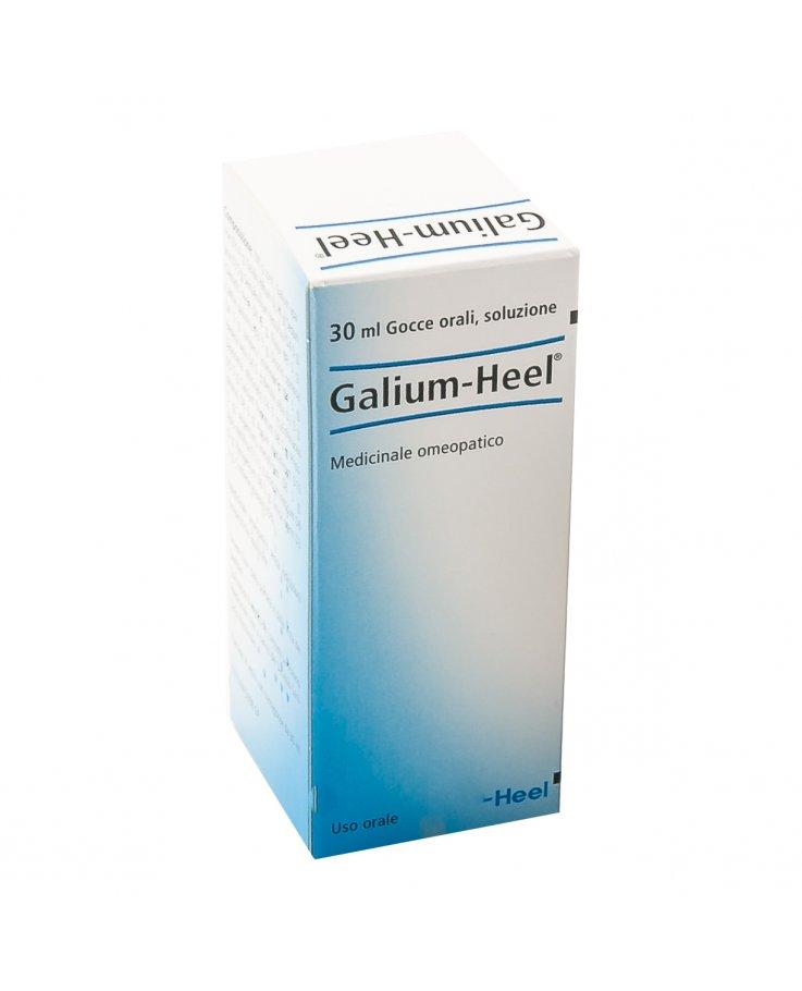 Galium Gocce 30ml Heel