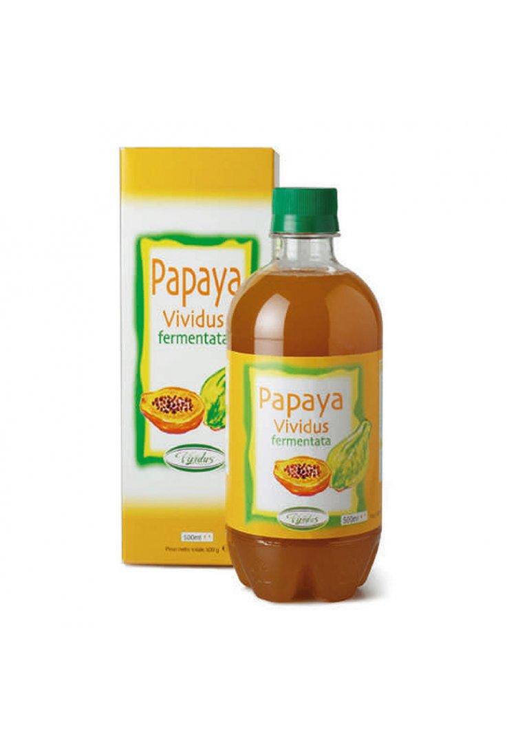 Papaya Fermentata 500ml